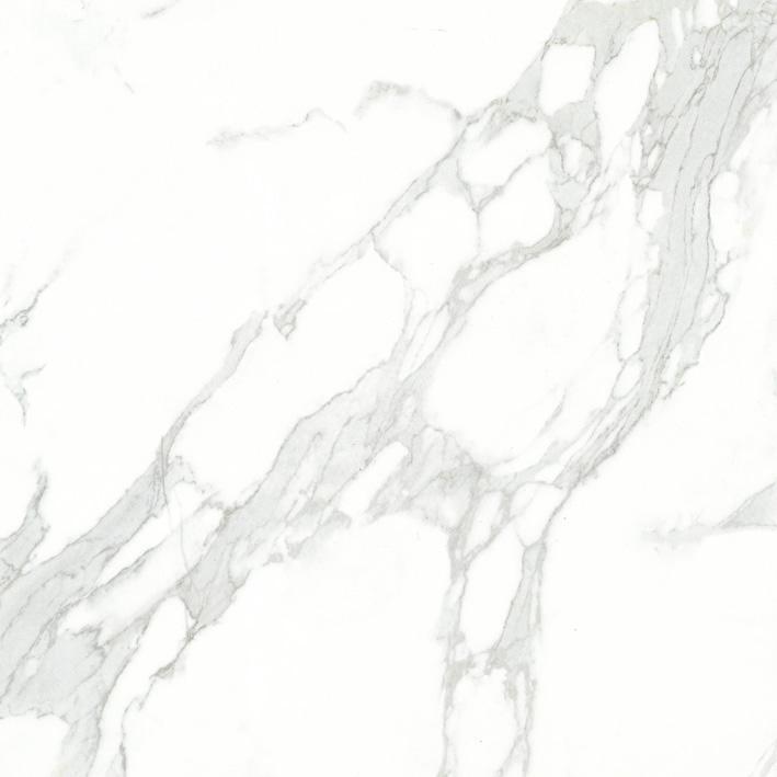 ELX00180S鱼肚白