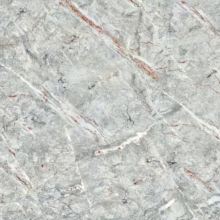 ELP10180S帕斯高灰